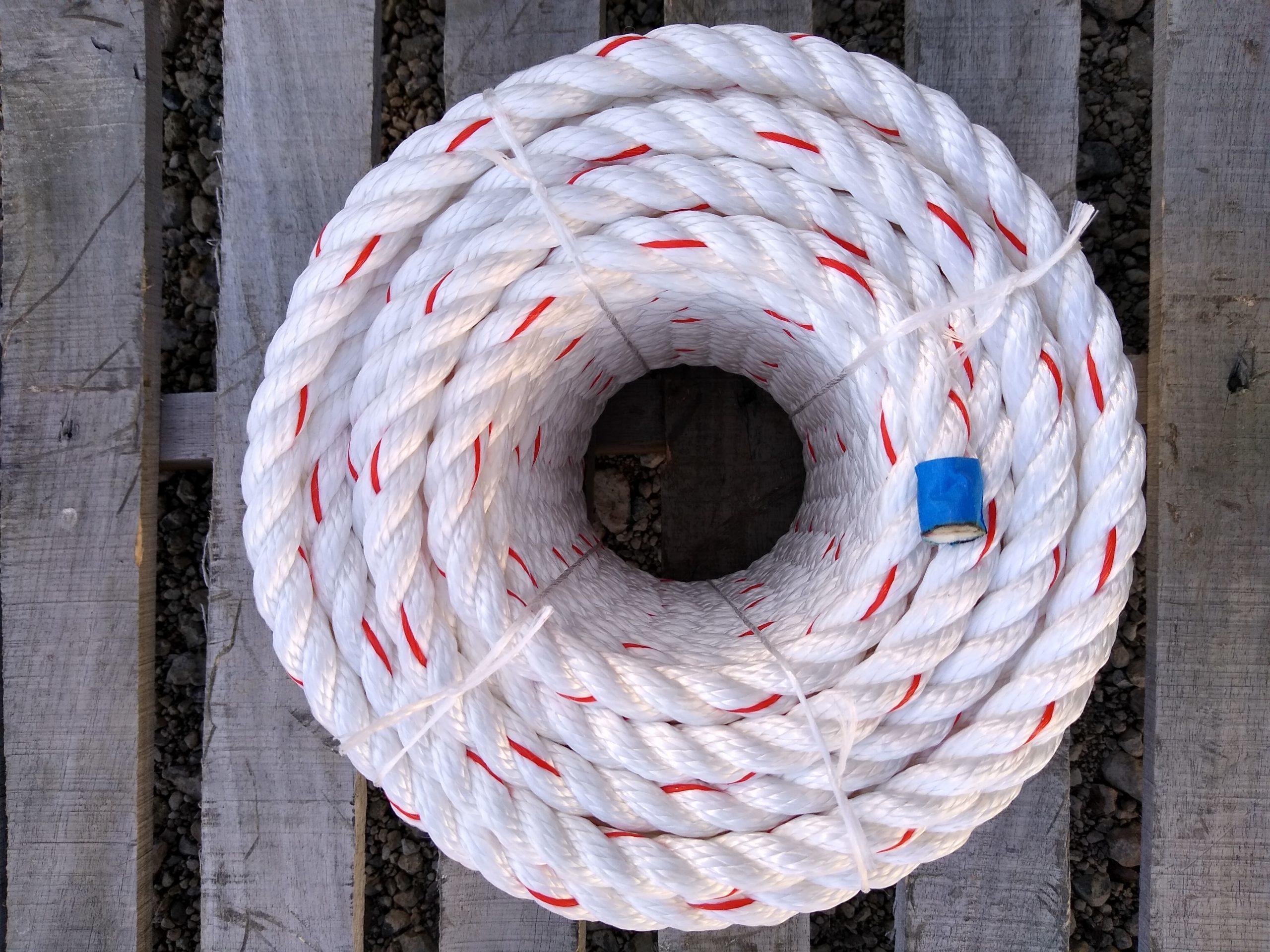 Economy Arborist Bull Rope coil